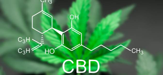 How CBD Topicals Prevent Dermatological Inflammation Through Regulation of Keratinocyte Proteins?