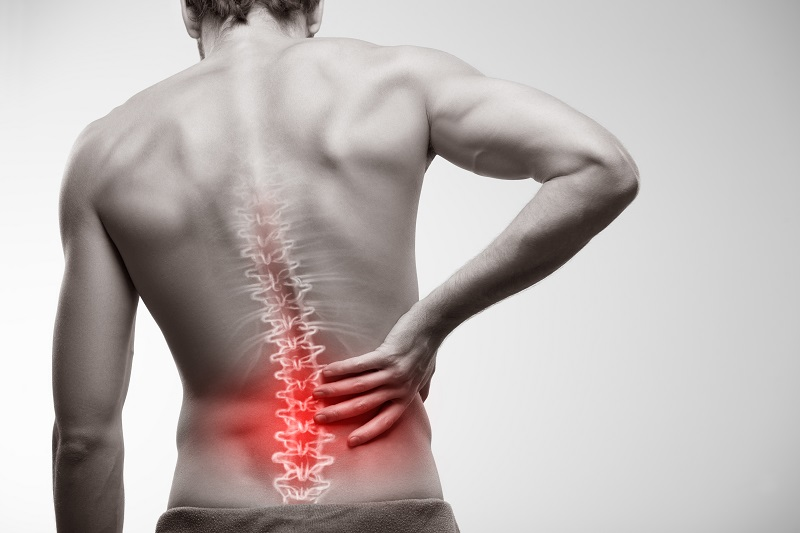 How CBD Can Help Alleviate Musculoskeletal Pain
